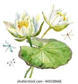 watercolor with white lotus flowers, water lily leaves retro card, dragonfly