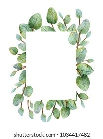 Watercolour green eucalyptus card on white background. Spring or summer flowers for invitation, wedding or greeting cards.