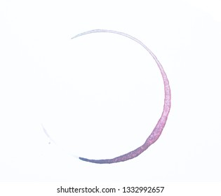 Watercolour Rainbow Coffee Cup Drink Stain On White Background
