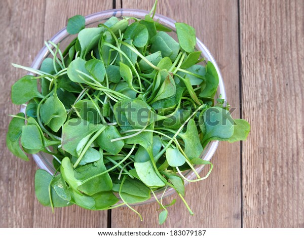 Watercress in bowl on wooden background. Top view.