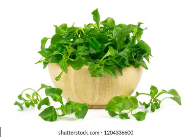 watercress in wooden bowl isolated on white background