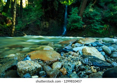 waterfall along forest stream in redwoods with river rock low angle