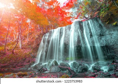 Waterfall Autumn colours red Leaves Fukushima, Japan