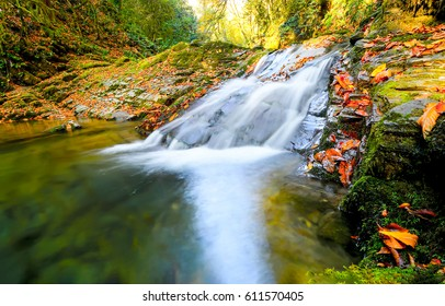 Waterfall in autumn forest landscape