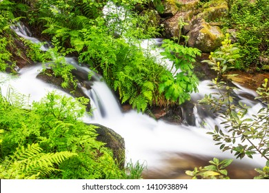 Waterfall between river vegetation on the stone and water route along Armenteira river in Meis town, Galicia, Spain