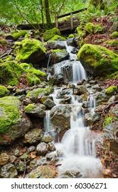 Waterfall and Bridge along the Cataract Canyon hiking trail, Marin County California