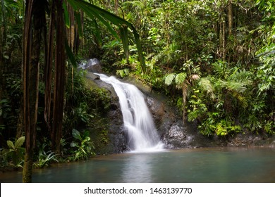 Waterfall Cascading into a Pool at Colo-i-Suva Forest Reserve
