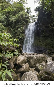 Waterfall in a cloud forest near Boquete, Panama. Accessible by Lost Waterfalls hiking trail