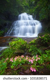 Waterfall in the deep forest