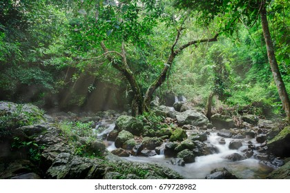 Waterfall in deep forest with light ray and fog , Thailand
