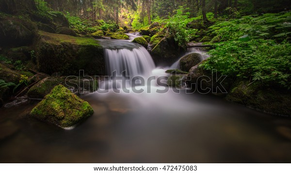 Waterfall in deep forest. Deep in the forest. Oasis of peace.