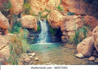 Waterfall in Ein Gedi, Israel
