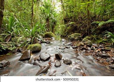 Waterfall, Fiji, Viti Levu island, Colo-I-Suva Forest Park