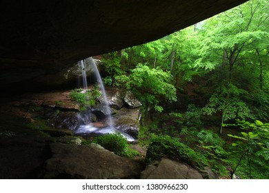 Waterfall flows into a deep canyon in the woodland of northern Alabama