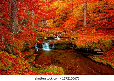 Waterfall in the forest in autum