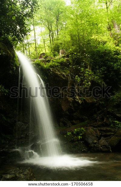 A waterfall in a forest.  Grotto Falls, Great Smoky Mountains National Park, TN, USA.