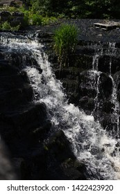Waterfall in a forest (River Dodder Weir)