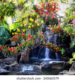 Waterfall in garden