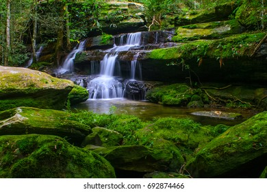 waterfall with green moss in the forest mountain at Phukradueng Nationnal Park of Thailand