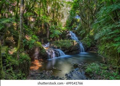 Waterfall in Hawaii Tropical Botanical Garden, long exposure