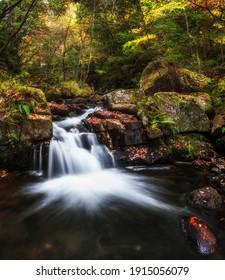 A waterfall in Iwayado Park, Japan