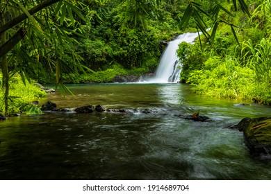 El paisaje de las cataratas. Hermosa cascada oculta en la selva tropical. Río Jungle. Aventura y viaje a Asia. Cascada de agua en cambio en Sambangan, Bali. Velocidad de obturación lenta, fotografía en movimiento.