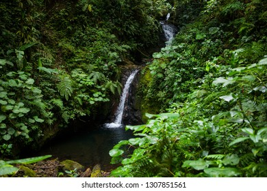 Waterfall in a Monteverde Cloud Forest Reserve in Costa Rica