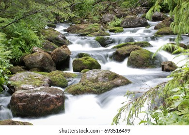 Waterfall and moss covered stones.