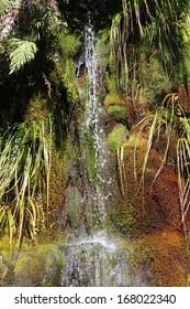 Waterfall in moss garden