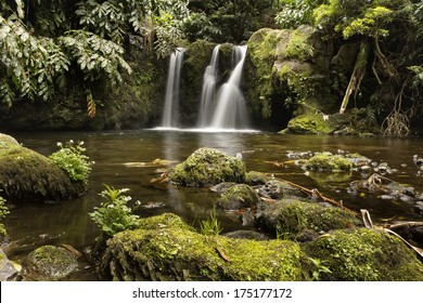 Waterfall in the mountain landscape of Sao Miguel (Azores).
