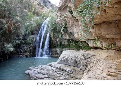 Waterfall in national park Ein Gedi near the Dead Sea in Israel - Shutterstock ID 1899156130