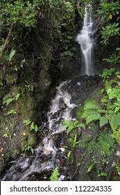 Waterfall near Inchiquin Lough, Killinaboy, The Burren, Co. Clare, Ireland