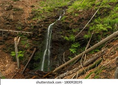 Waterfall near Kouty nad Desnou village in summer day in forest - Shutterstock ID 1800928195