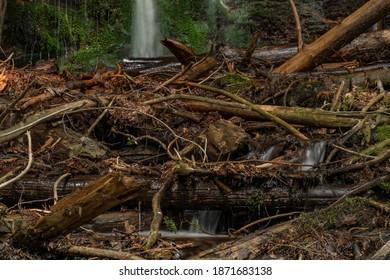 Waterfall near Kouty nad Desnou village in summer day in forest - Shutterstock ID 1871683138