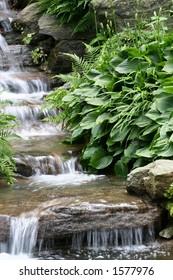 waterfall at New York Botanical Garden