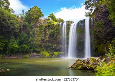 Waterfall in New Zealand forest with trees