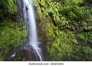 Waterfall next to Caldeirao Verde Levada hiking trail, Queimadas, Madeira, Portugal