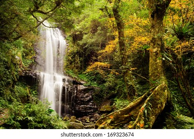 Waterfall with nice maple