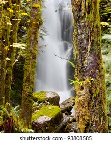 waterfall in Olympic National Park,USA