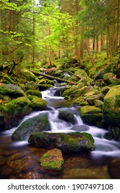 Waterfall on Black creek in the National park Sumava,Czechia.  Mountain stream flowing through the spring forest.
