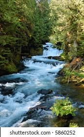 Waterfall on McKenzie River, Oregon