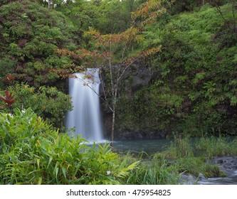 Waterfall on the road to Hana Maui