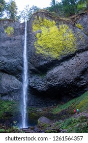 Waterfall in Oregon