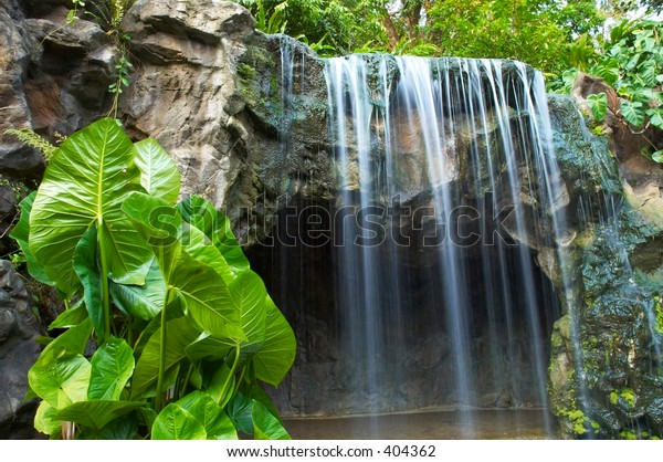 waterfall with plant in foreground