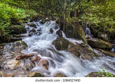 Waterfall, Ranomafana (hot water in Malagasy) National Park, Madagascar
