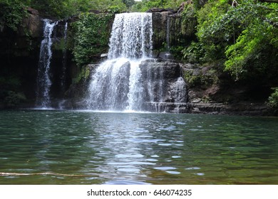 The waterfall is rich with forest.