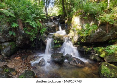 Waterfall surrounded by beautiful nature in Blackforest Germany, Todnauberg