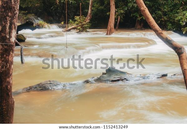 Waterfall and tree in the rainy season at sunrise.