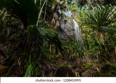 Waterfall at the tropical islands of the Seychelles