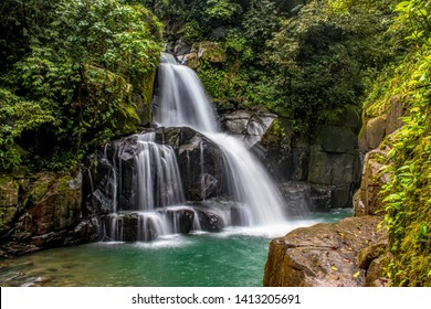 Waterfall with vibrant trees in summer